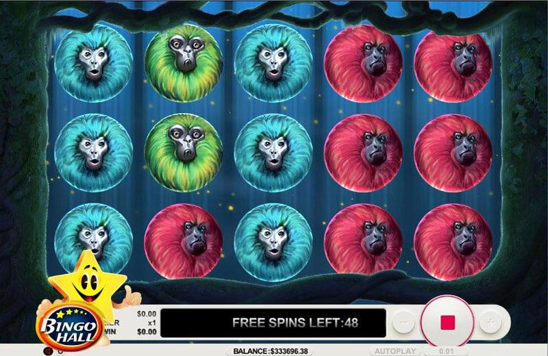 Bingo Hall 7 Monkey