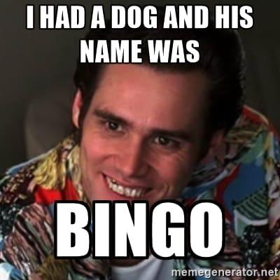 Funny Bingo Memes 8