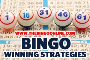 bingo winning strategies