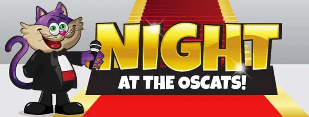 City Bingo Promo: City Cat welcomes all at the OSCAT Night